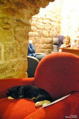 Le Café des #Chats à Paris / Sleep #cat in a coffee shop in #Paris