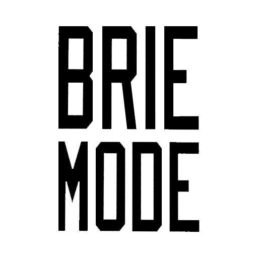 brie mode logo google search i love the bellas