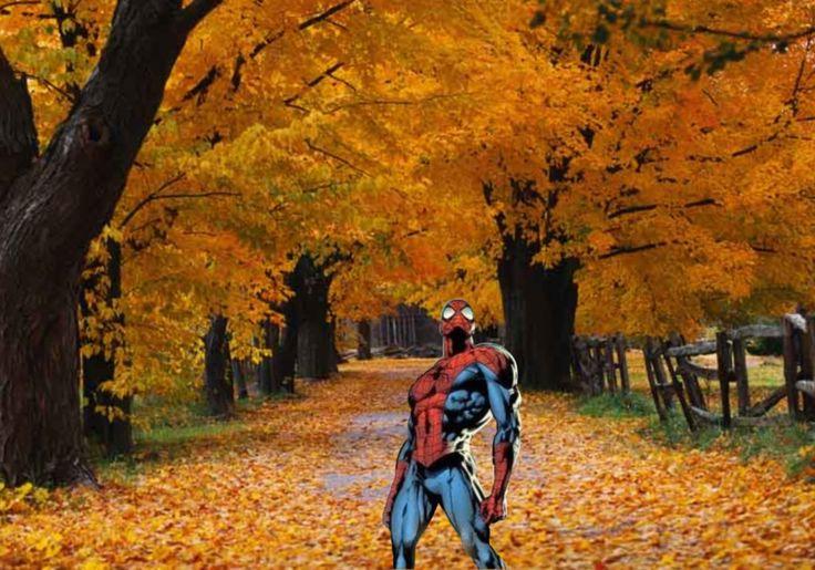 fun fall wallpaper - photo #20