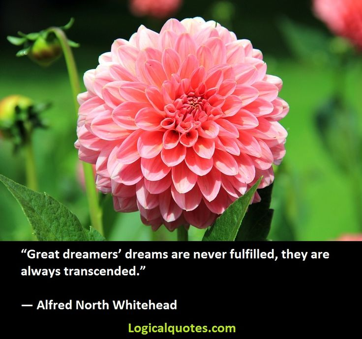 Inspirational Alfred North Whitehead Quotes