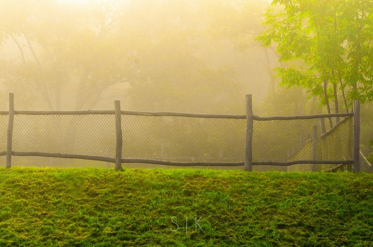 Fence in the morning by Roman Kozhukhov on 500px #landscape #nature