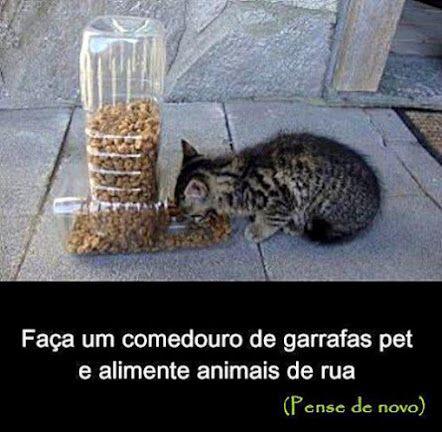 Bilhões de garrafas PET são geradas no Brasil todos os anos. Segundo a ABIPET (Associação Brasileira da Indústria do Pet) a reciclagem dess...