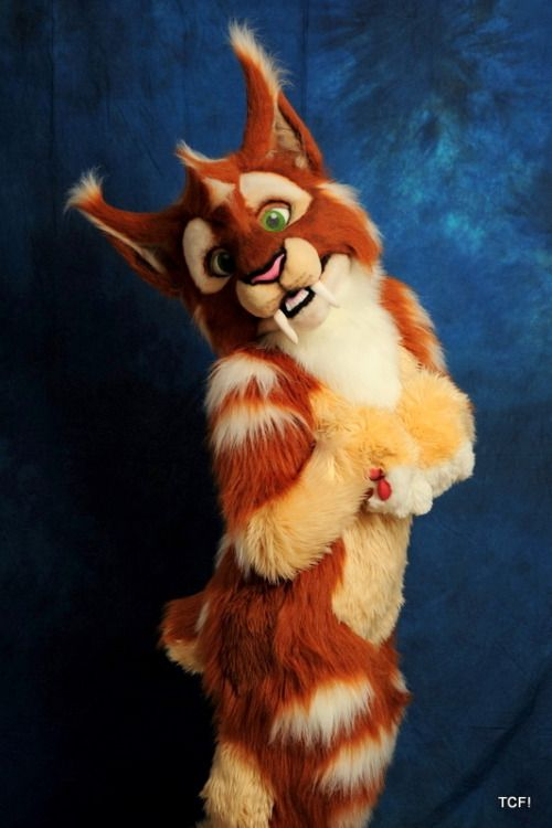 "From Ripner,  Sabretooth cat suit we made about a year ago.  We are about to open commissions again, so if you are interested drop us a line at tcfquotesATgmail.com and get a quote today!  From Media,  Pictures of ""Dirt"" the saber tooth kitty.  We remade the head, as the first suit was an experiment. I am glad we got a chance to snap a few photos before it goes to it's new home tomorrow.   For the record, I really like this suit."