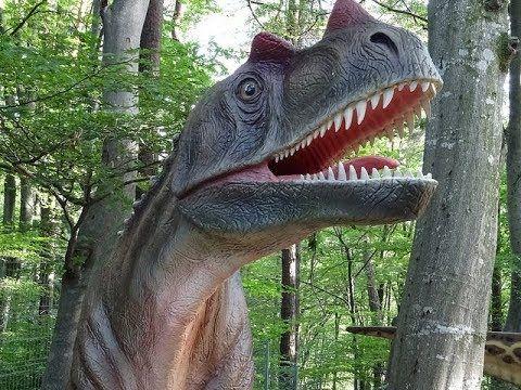 Aventuri la Dino Park din Râșnov