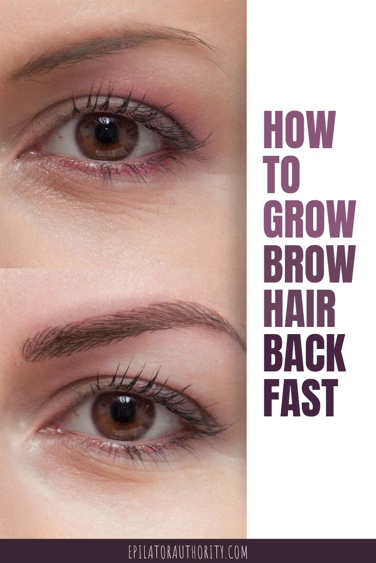 How To Grow Eyebrow Hair Back Fast The Ultimate Guide How To