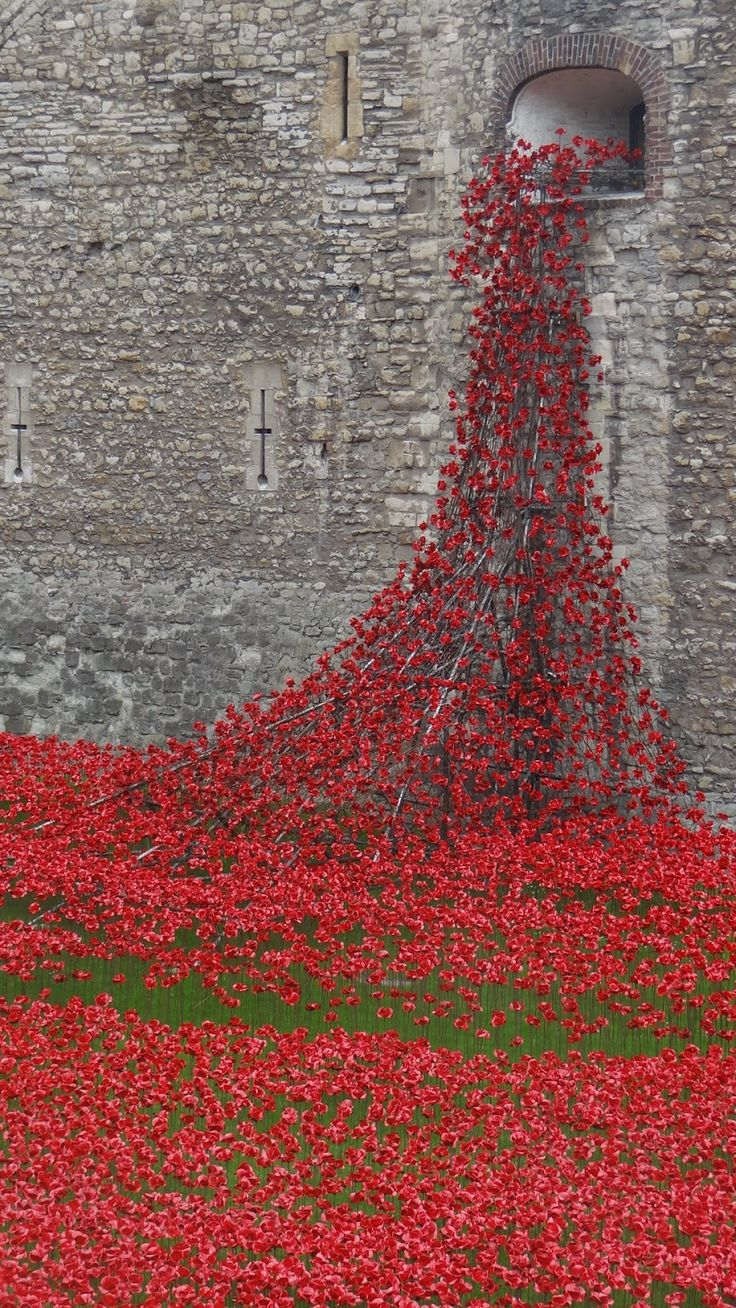 "2014 - This incredible picture shows a river of red flowing out of the historic ""Tower of London"" and into the moat below."