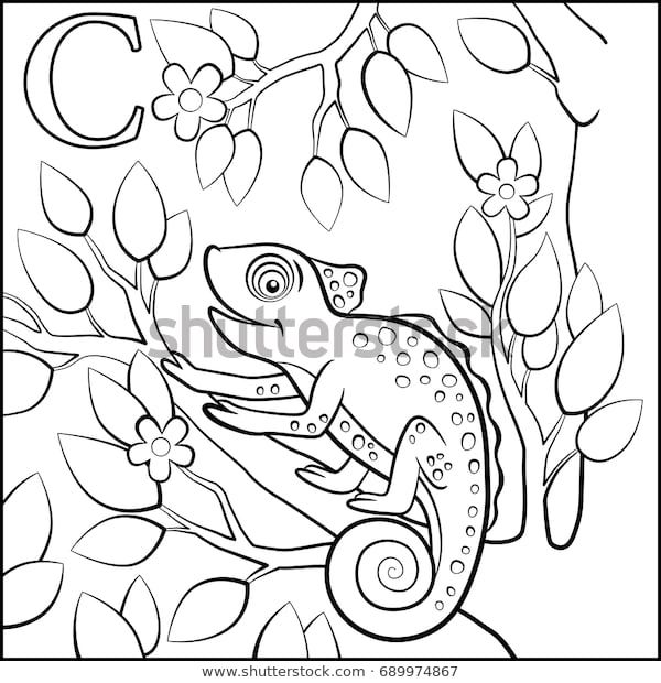 Suchen Sie Nach Coloring Page Cartoon Animals Alphabet C