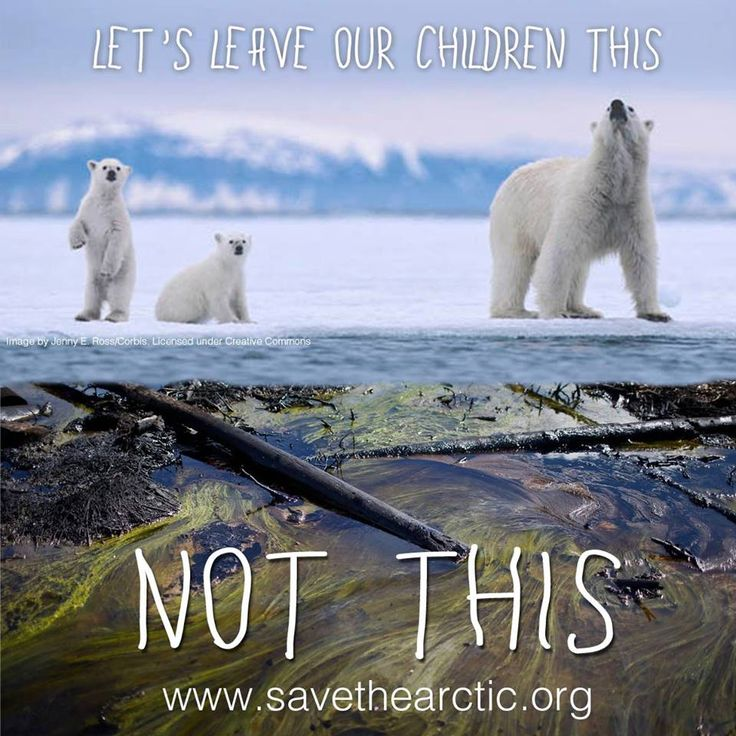 Let's leave our children a healthy planet Save the Arctic