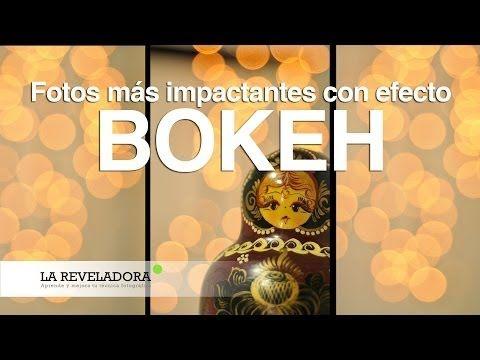 Efecto Bokeh #Fotografía #Photography #Bokeh