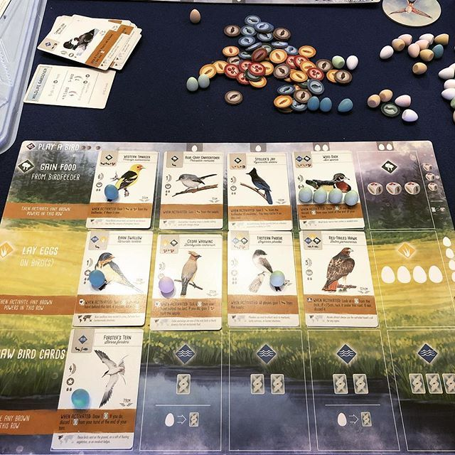 Wingspan If We Keep This Up Wingspan Will Easily Be Our Most Played Game Of 2019 So Much Love Wingspan Jameyste Board Game Design Card Games Game Design