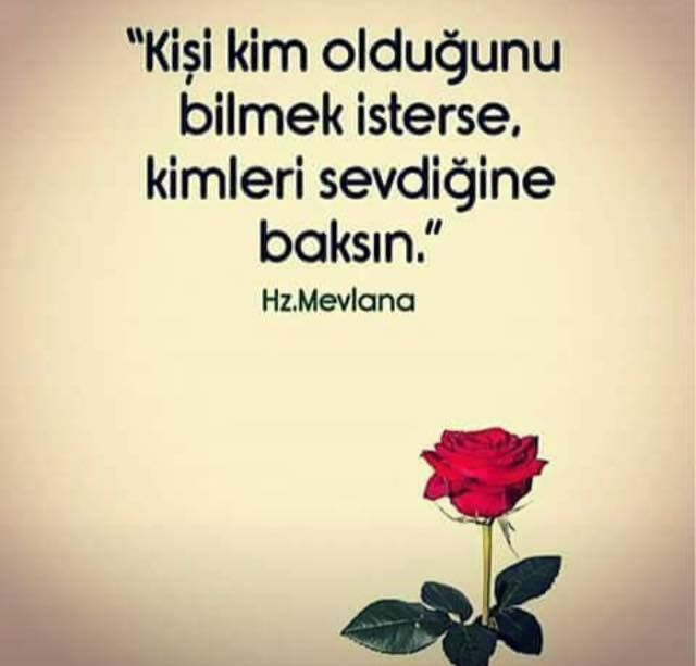 Unlu Mevlana Sozleri 6 Unlu Mevlana Sozleri 6 Enguzelunlumevlanasozleri Resimliunlumevlanasozleri Unlumevlanaasksoz Meaningful Words Words Funny Quotes