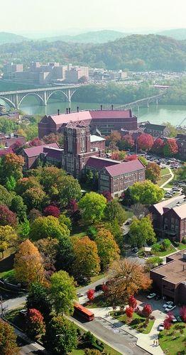 Voy a la universidad de Tennessee por taxi para estudiar.