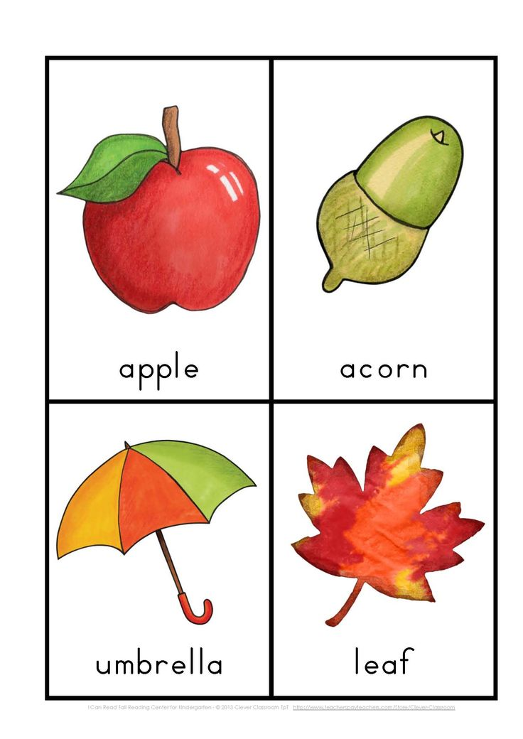 I Can Read Fall Reading for Kindergarten {vocab cards & sentence work}$