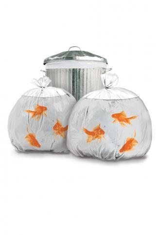 Goldfish Bin Bags! Love this:): Goldfish Bins, Goldfish Garbage, Goldfish Trash, Funny, Trash Bags, Gold Fish, Bins Bags, Garbage Bags, Products