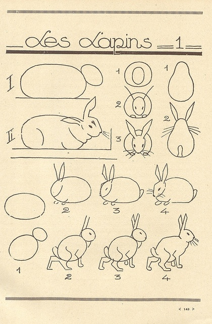 Teach the kids how to draw our class pet Reggie the Rabbit!