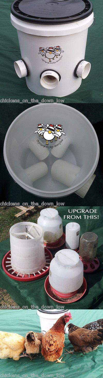 Backyard Poultry Supplies 177801: Automatic Chicken Feeder - Poop-Free - 5 Gallon - Ideal For Backyard Chickens -> BUY IT NOW ONLY: $50 on eBay!