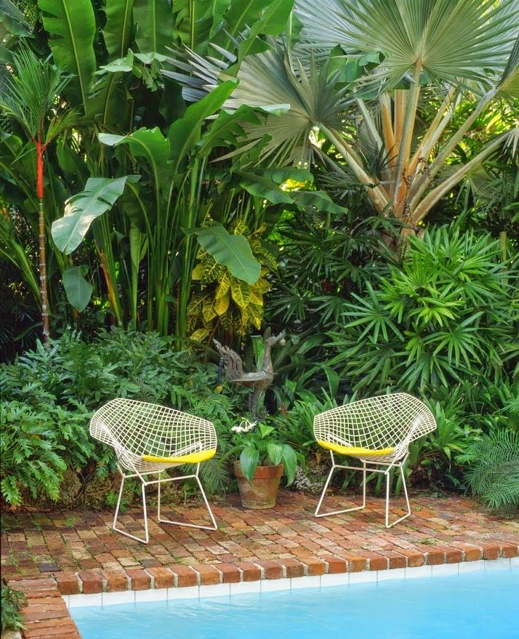 Bertoia chairs and Lovely pool side