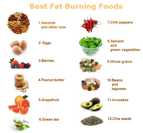 Healthy Fat Burning Foods and advice to help you lose ...