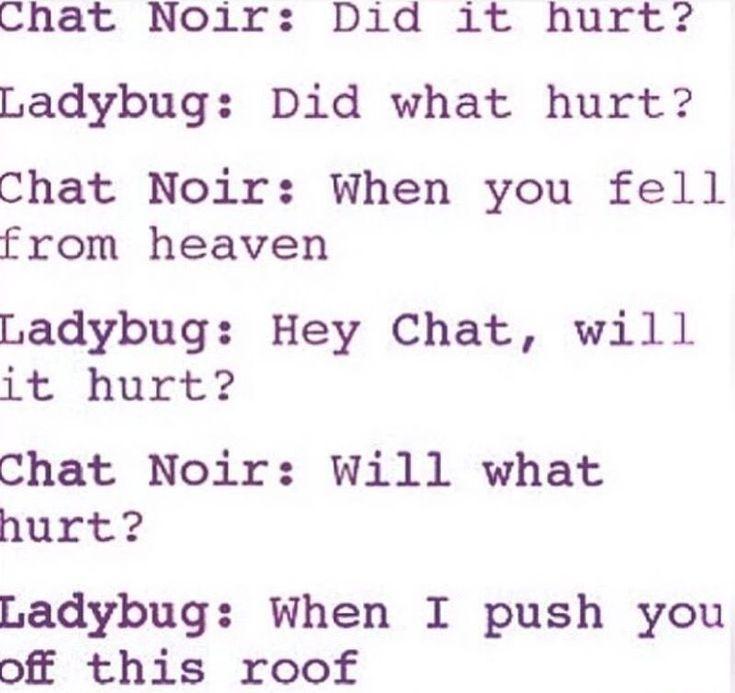 Miraculous Ladybug | LadyNoir