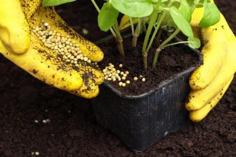 Fertilizantes para el jardín...