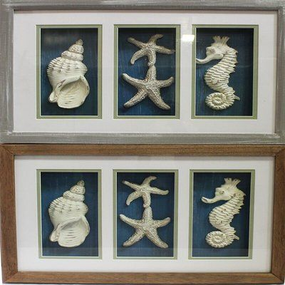 Highland Dunes Seashell Shadow Box Wall Décor