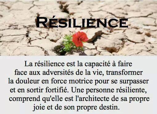 La résilience est la capacité à faire face aux adversités de la vie, transformer la douleur en force motrice pour se surpasser et en sortir fortifié. Une personne résiliente comprend qu'elle est l'architecte de sa propre joie et de son propre destin. .