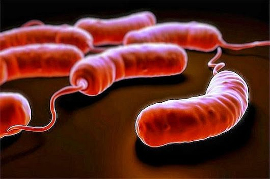 CHOLERA OUTBREAK IN YEMEN 5,000 NEW CASES PER DAY Total cases exceed 200,000 ...