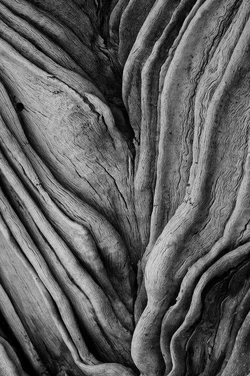 Wood. Stiff. Wrinkle. Rough. Deep