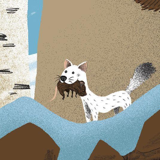 Forest animals / Animaux de la forêt by Philippe Jalbert, via Behance