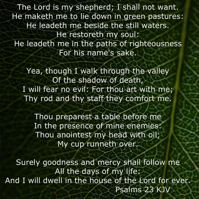 Psalms 23 KJV