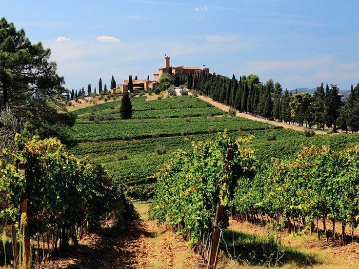 CASTELLO BANFI  Montalcino, Italy