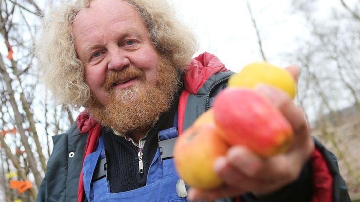Eckart Brandt, der Hüter alter Apfelsorten, sucht Paten für alte Obstbäume - http://www.boomgarden.de