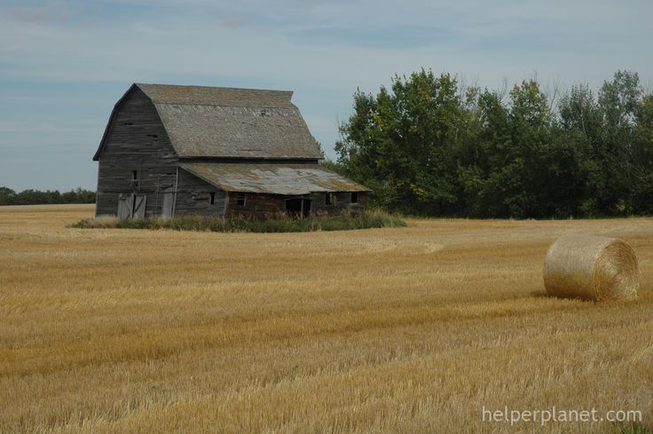 Old Barn Alberta Canada