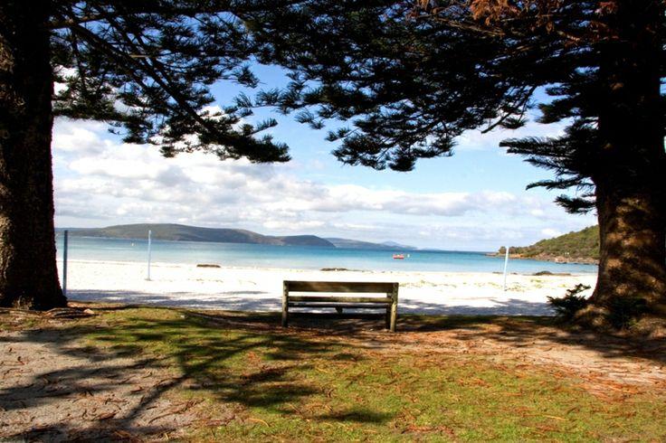 Take in the view. #australia #beachRoyal Caribbean, Australia Beach, Rci Cruises, Cruises Ships, Crui Ships, Excited Onboarding, Caribbean International, Beach Australia, Adventure Pack Crui