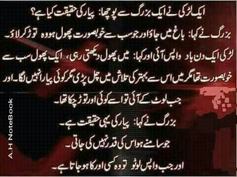 17 best images about urdu poetry on pinterest abs