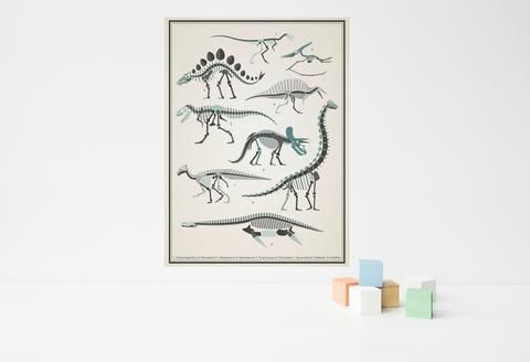 Dinosaur skeletons poster decal - vintage