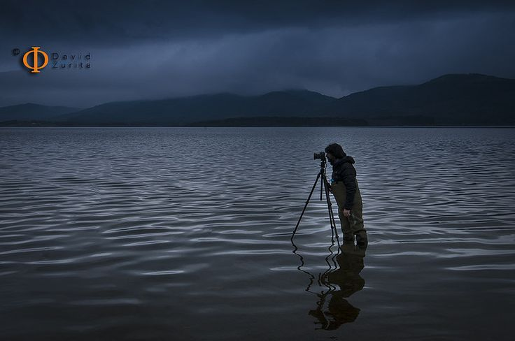 photographers around the swamp