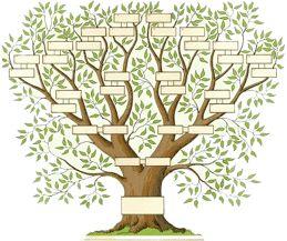 arbre généalogique gratuit à imprimer - Recherche Google