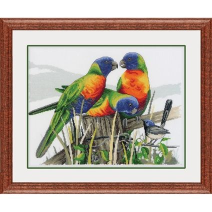 Lorikeets and blue wren - Fox Collection