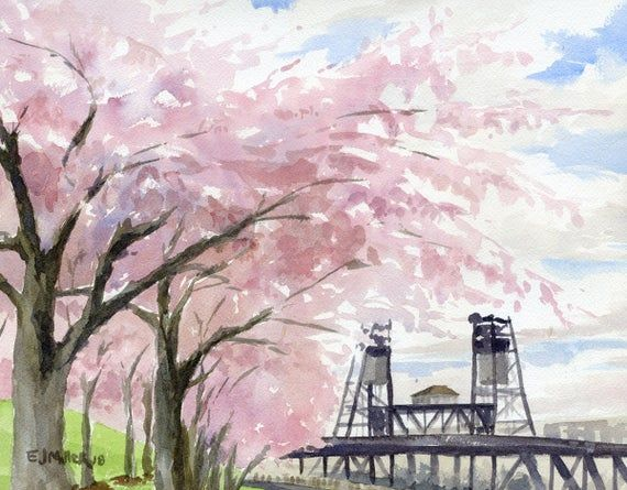 Cherry Blossoms Art Print Portland Oregon Art Portland Steel