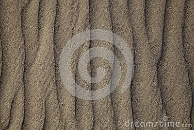 A sand ripples texture in the desert