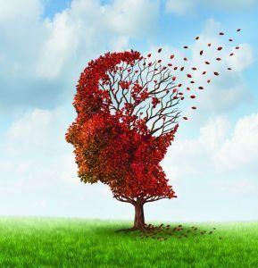 Jak Alzheimer okrada mózg?