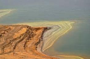 La mer Morte est-elle morte ? - Istyablog : pour savoir en toute décontraction
