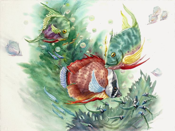 fish watercolor 540 best watercolor fish images on pinterest watercolor fish