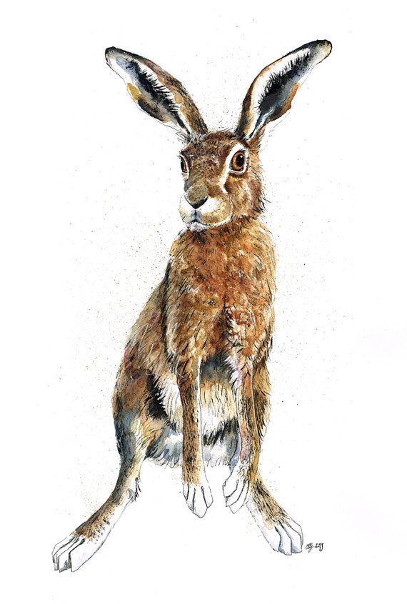 A2 Original Painting of a Hare  Hadriana by jina11 on Etsy, $550.00