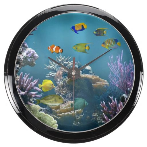 17 best images about zazzle custom designed clocks on pinterest clock stainless steel and squares - Fish clock aquarium ...