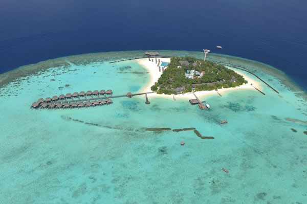 I would take any available villas at the Maafushivaru Hotel in the Maldives. I'm relaxing just looking at them.
