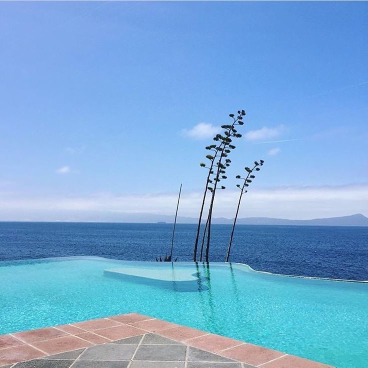 Something tells us there's an agave or two on the other side of this pool.  by @marjoryg