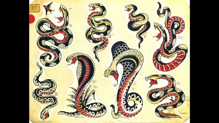 Traditional snakes tattoo