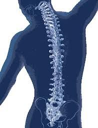 Ten Tips for a Healthy Spine